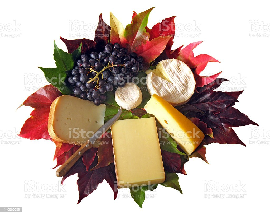 Cheese & grapes on vine leaves royalty-free stock photo