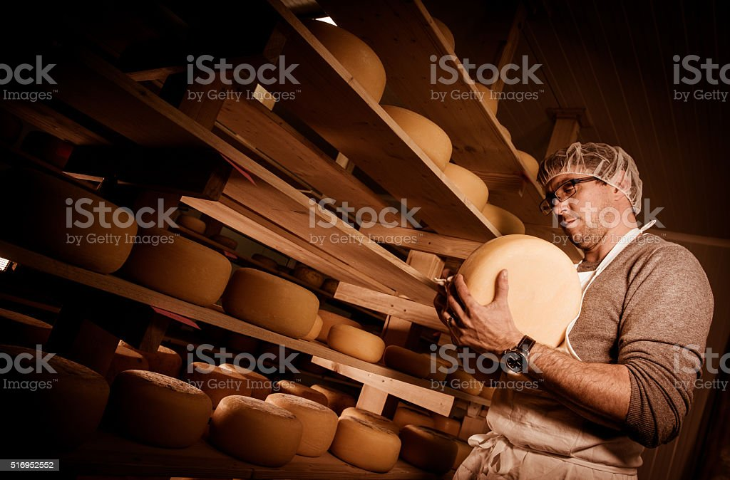 Cheese maker cleaning cheeses in his workshop stock photo