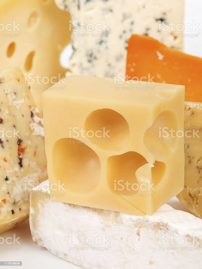 Cheese still life royalty-free stock photo
