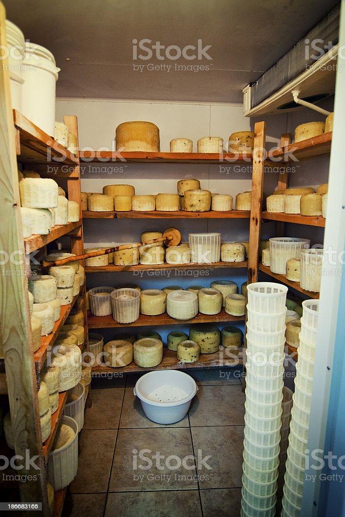Cheese stock stock photo
