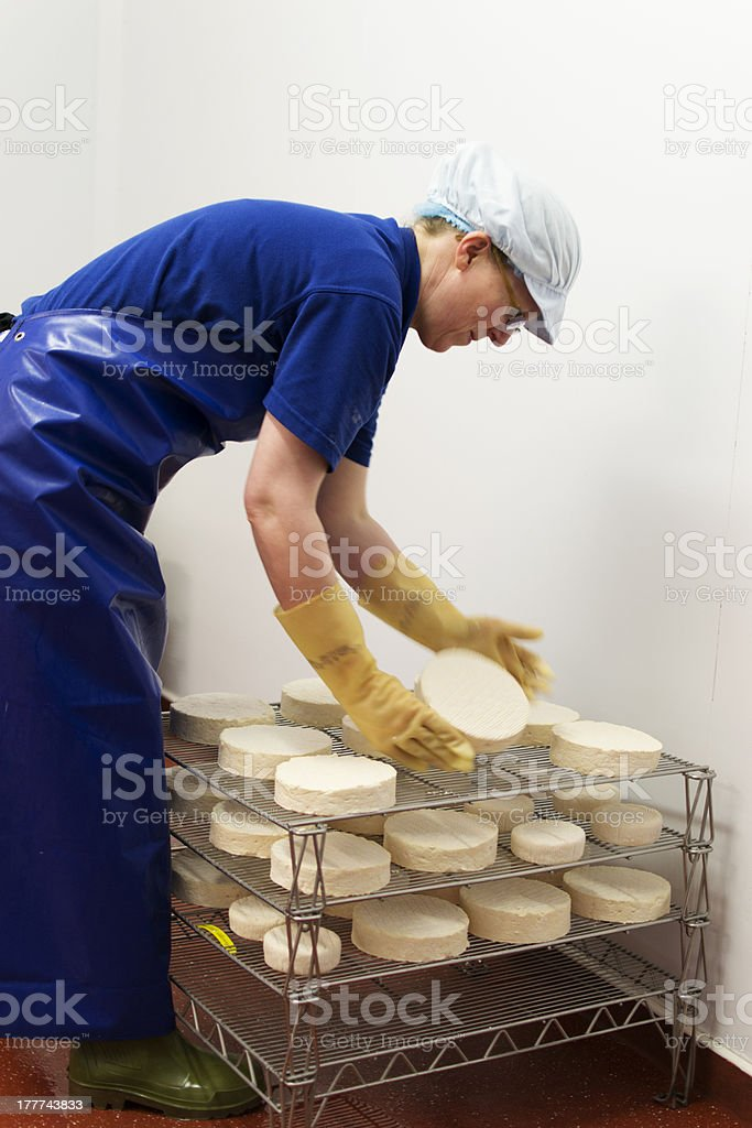 Cheese turning royalty-free stock photo