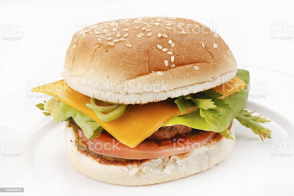 cheeseburger on the plate royalty-free stock photo