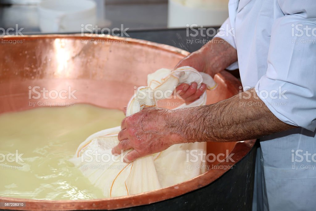 cheesemaker collects the cheese with the tarp stock photo