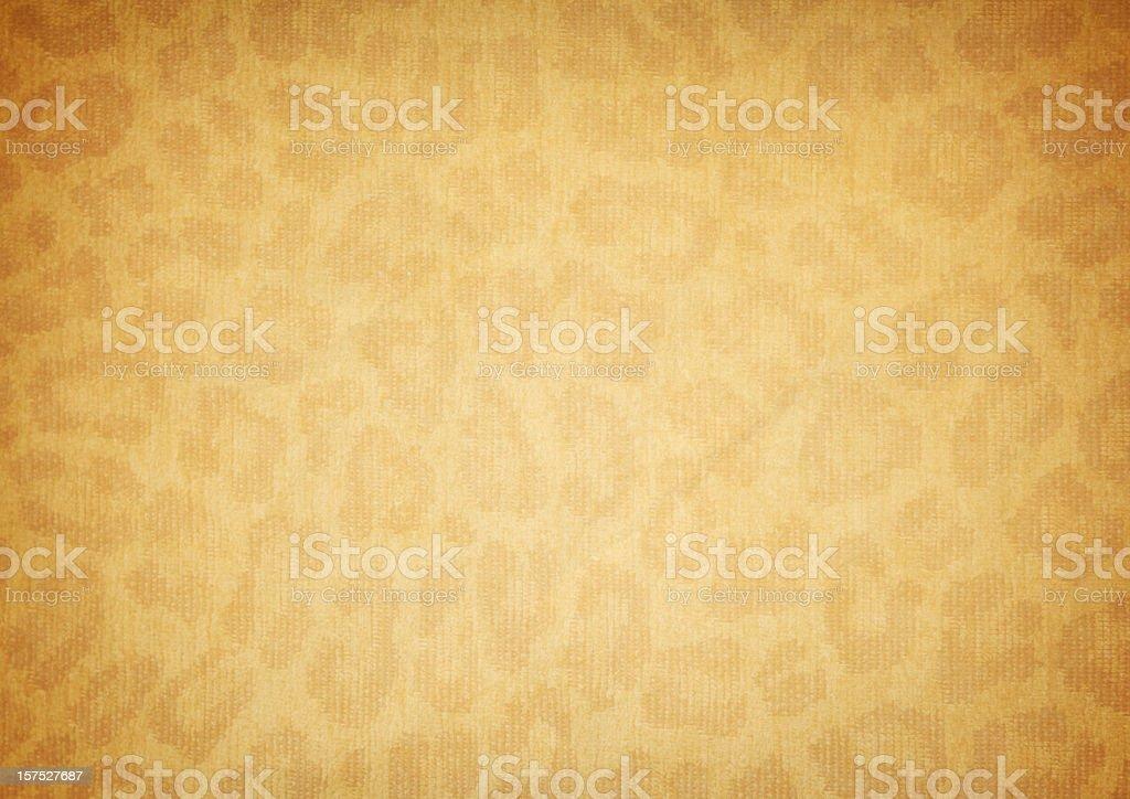 Cheetah Grunge royalty-free stock photo