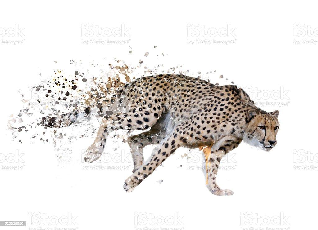 Cheetah (Acinonyx jubatus) Watercolor stock photo