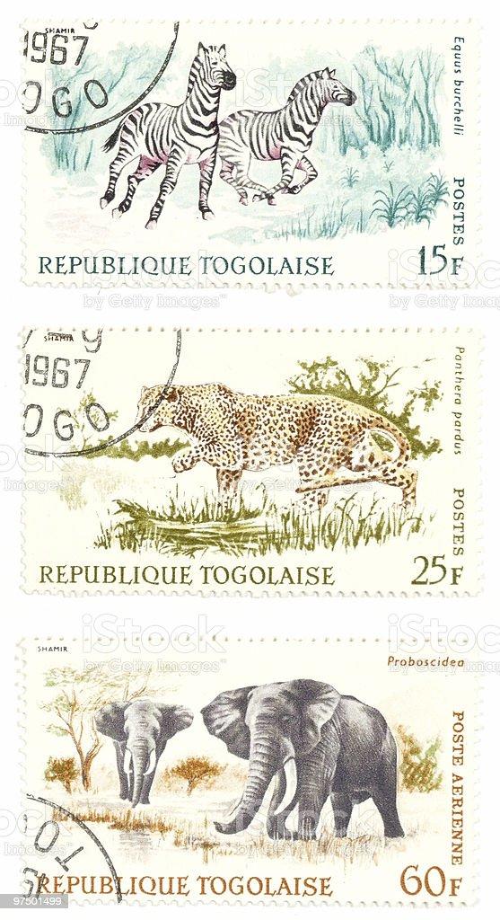 Cheetah, zebras, elephants post stamps royalty-free stock photo