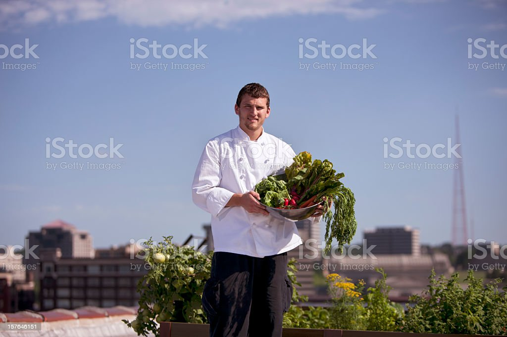Chef harvesting homegrown vegetables from rooftop garden royalty-free stock photo