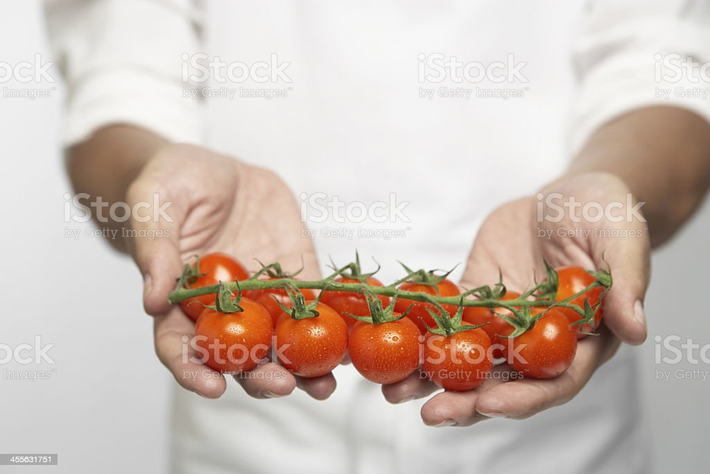 Chef holding tomatoes on vine (mid section) royalty-free stock photo