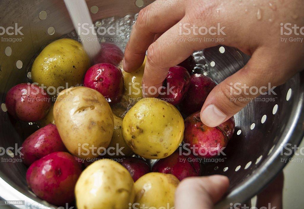 Chef washing potatoes royalty-free stock photo