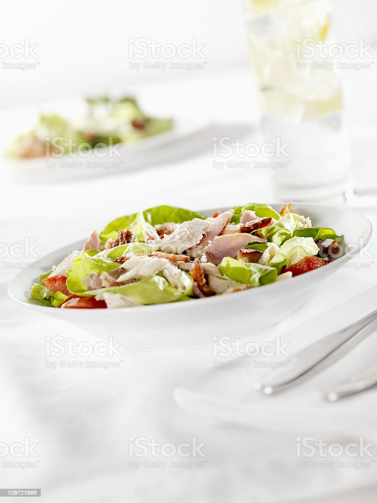 Chefs Salad with Chicken royalty-free stock photo