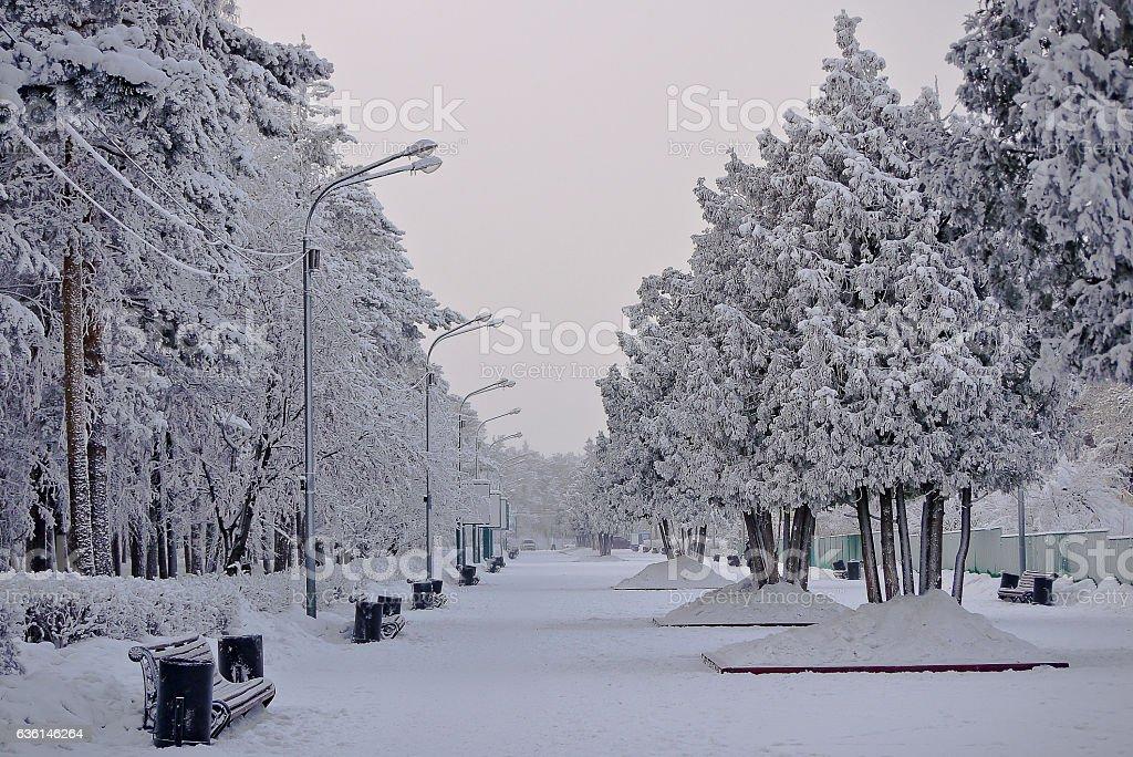 Chelyabinsk. Gagarin's park in the winter stock photo