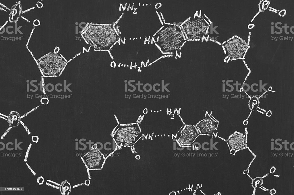 chemical formula of DNA on a blackboard stock photo