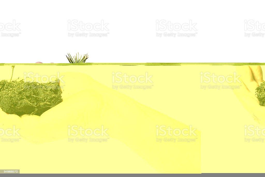 chemical laboratory scene stock photo