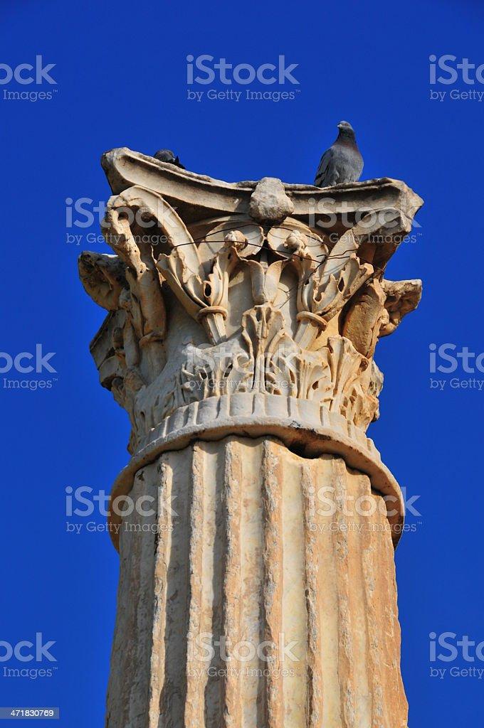 Cherchell, Algeria: Roman column - Corinthian order stock photo