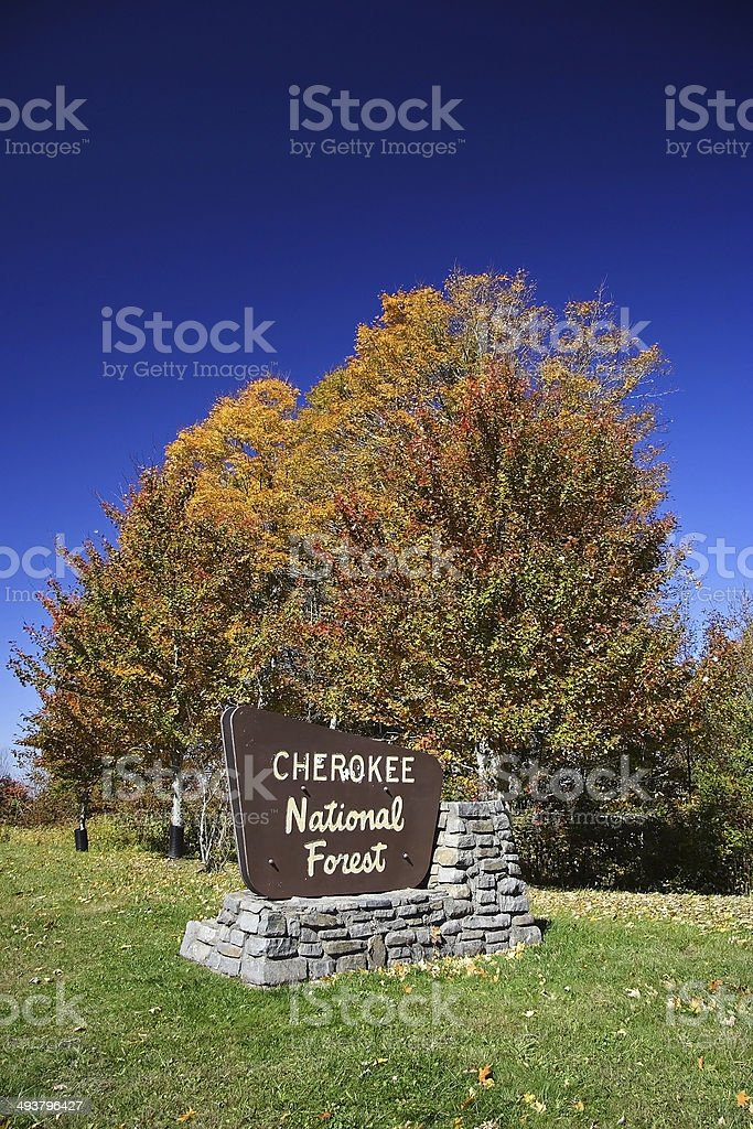 Cherokee National Forest stock photo