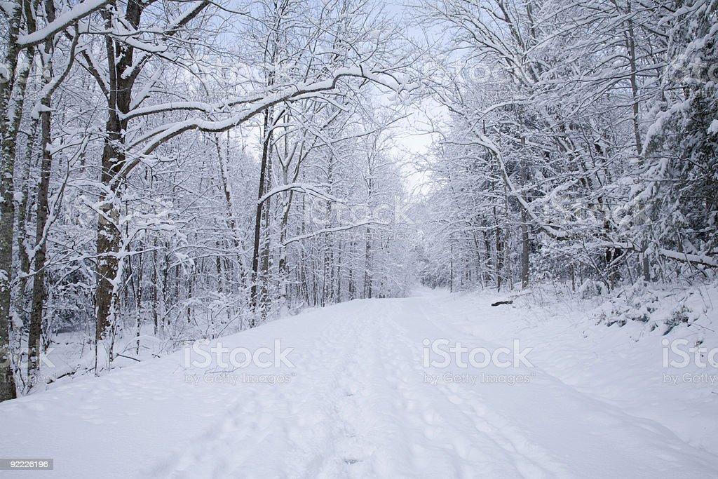 Cherokee Orchard Road, Snow, Gatlinburg, TN stock photo