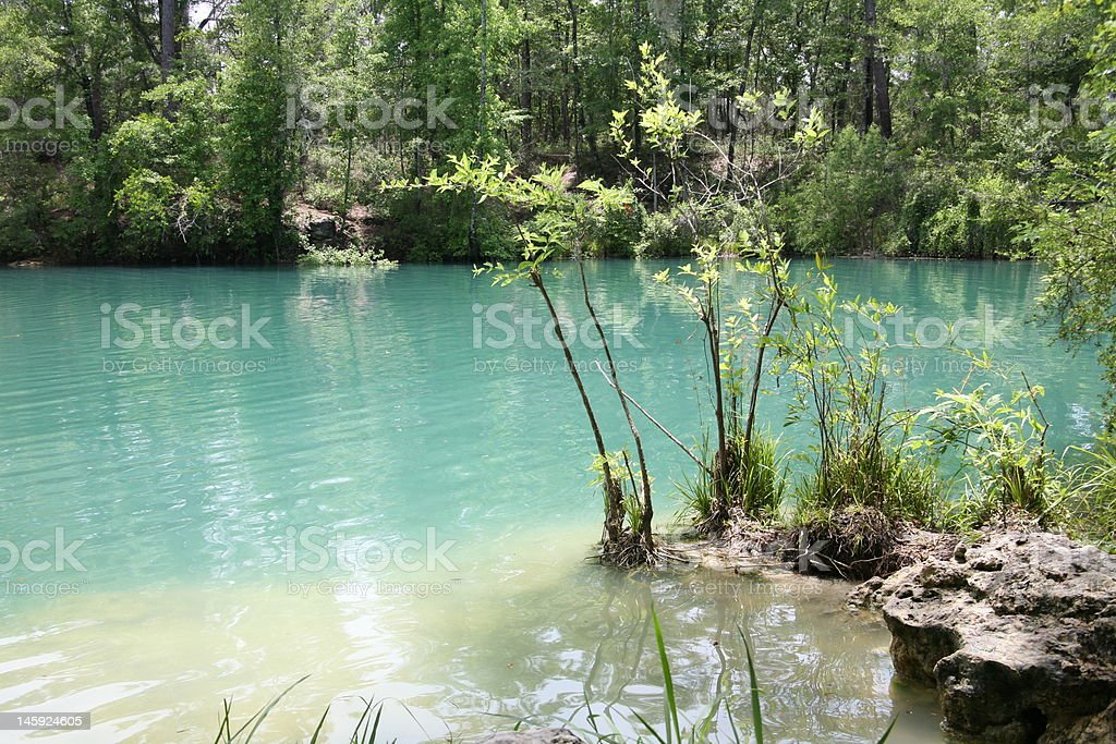Cherokee Sink, Florida royalty-free stock photo