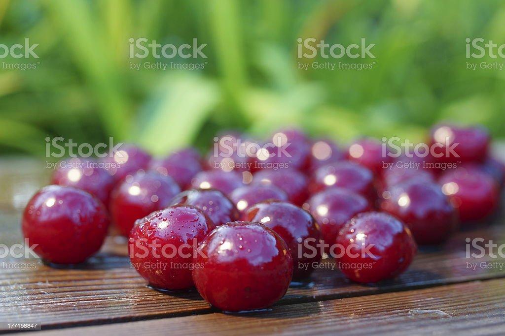 Cherries Fruit Food Summer Still Life. royalty-free stock photo