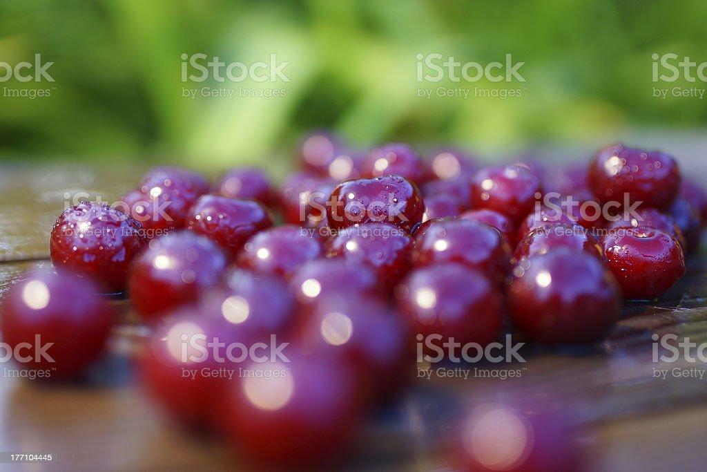 Cherries Fruit Summer Arrangement. royalty-free stock photo