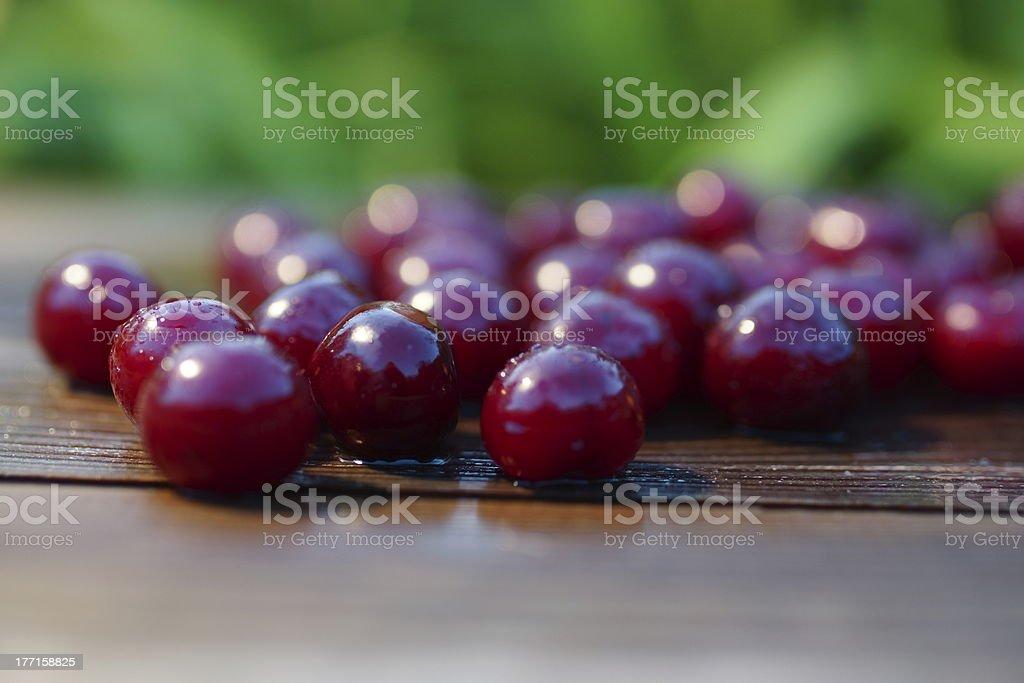 Cherries Fruit Summer Still Life. royalty-free stock photo