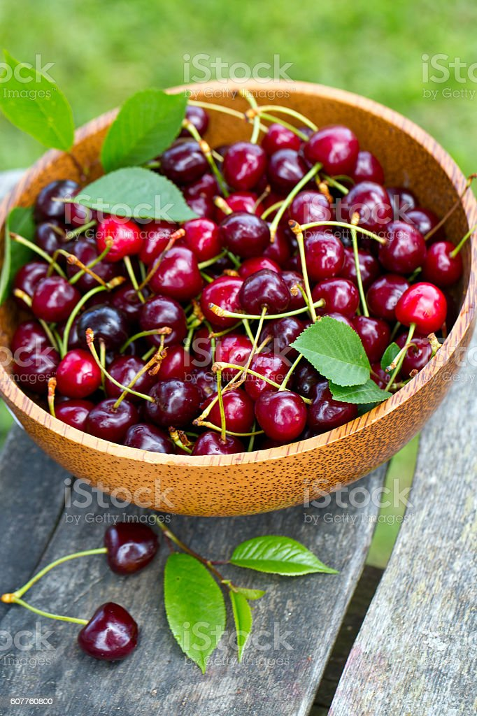 cherries in a bucket on wooden table stock photo