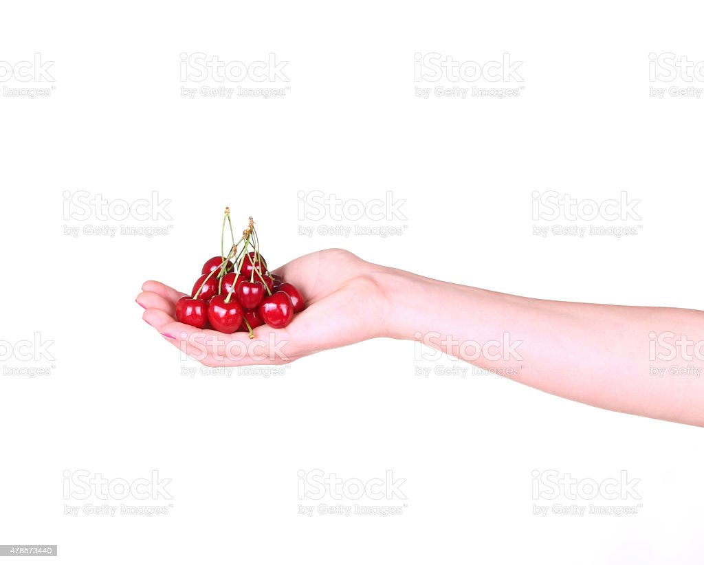 Cherries in a female hand on a white stock photo