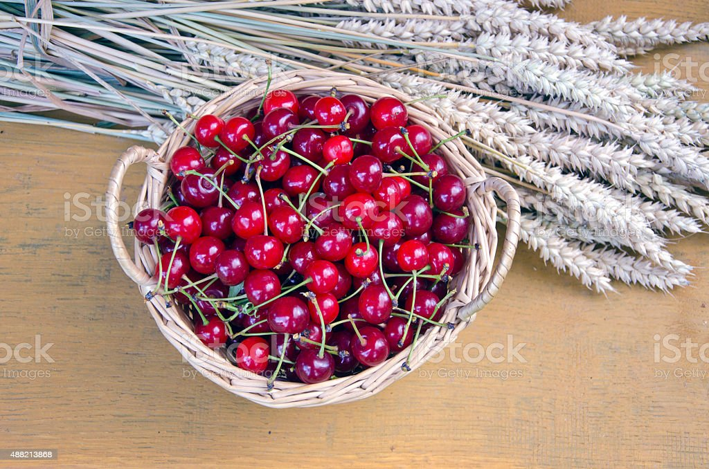 Cherries in wicker basket with bundle of wheat stock photo