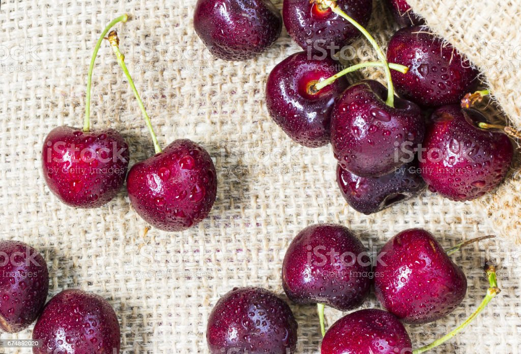 Cherries with water drops on the sackcloth stock photo
