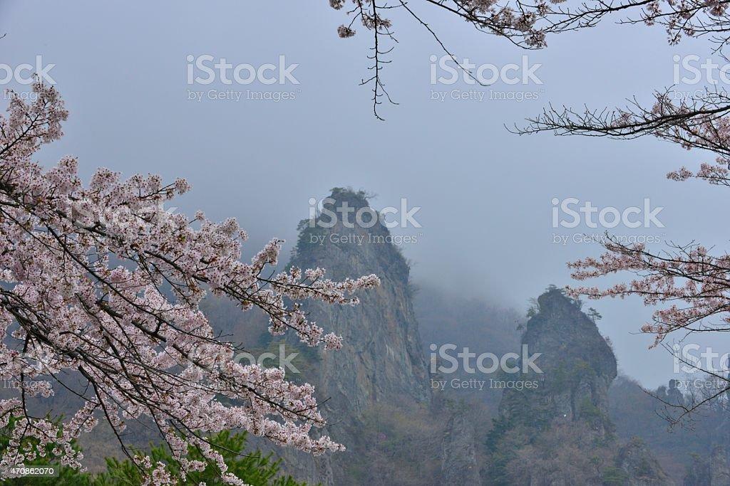 Cherry Blossom at Mt Myogi, Japan stock photo