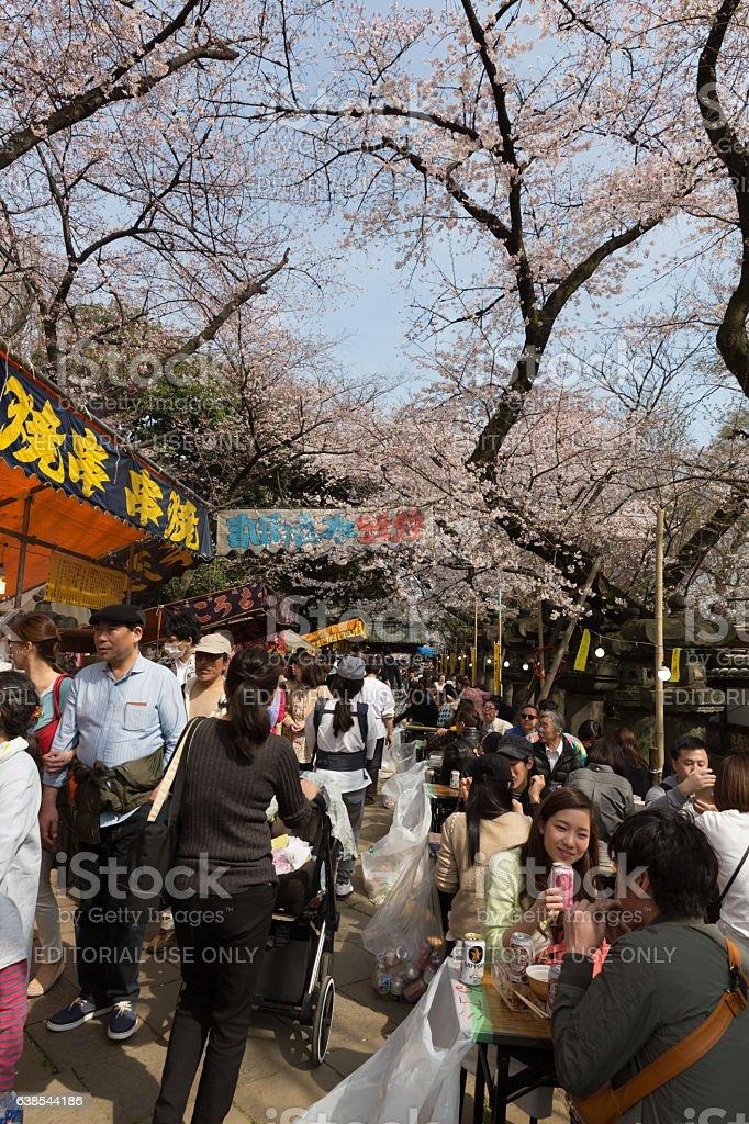 Cherry Blossom Festival in Tokyo, Japan stock photo