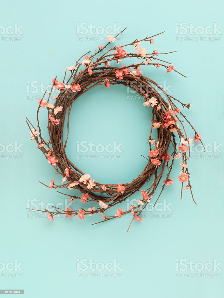 Cherry blossom wreath hanging on a blue background royalty-free stock photo