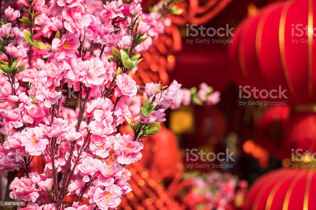 Cherry blossoms and lanterns stock photo