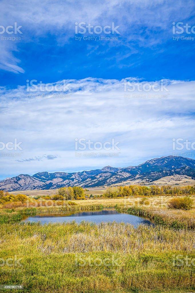 Cherry Creek Preserve stock photo