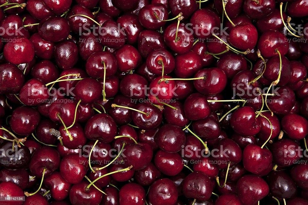 cherry crop stock photo
