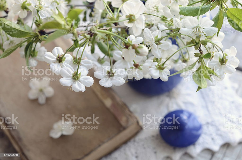 Cherry flowers bunch in blue pot and old book royalty-free stock photo