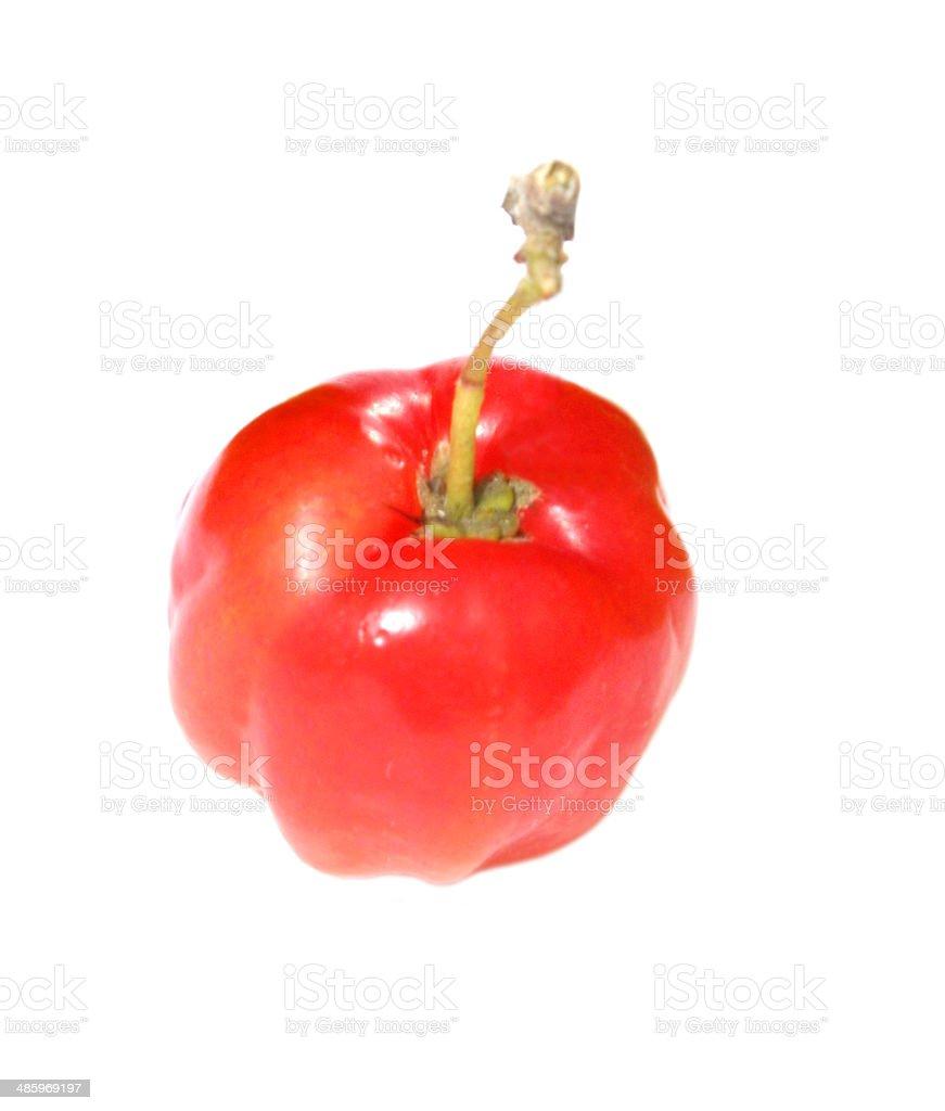 Cherry de fruits photo libre de droits