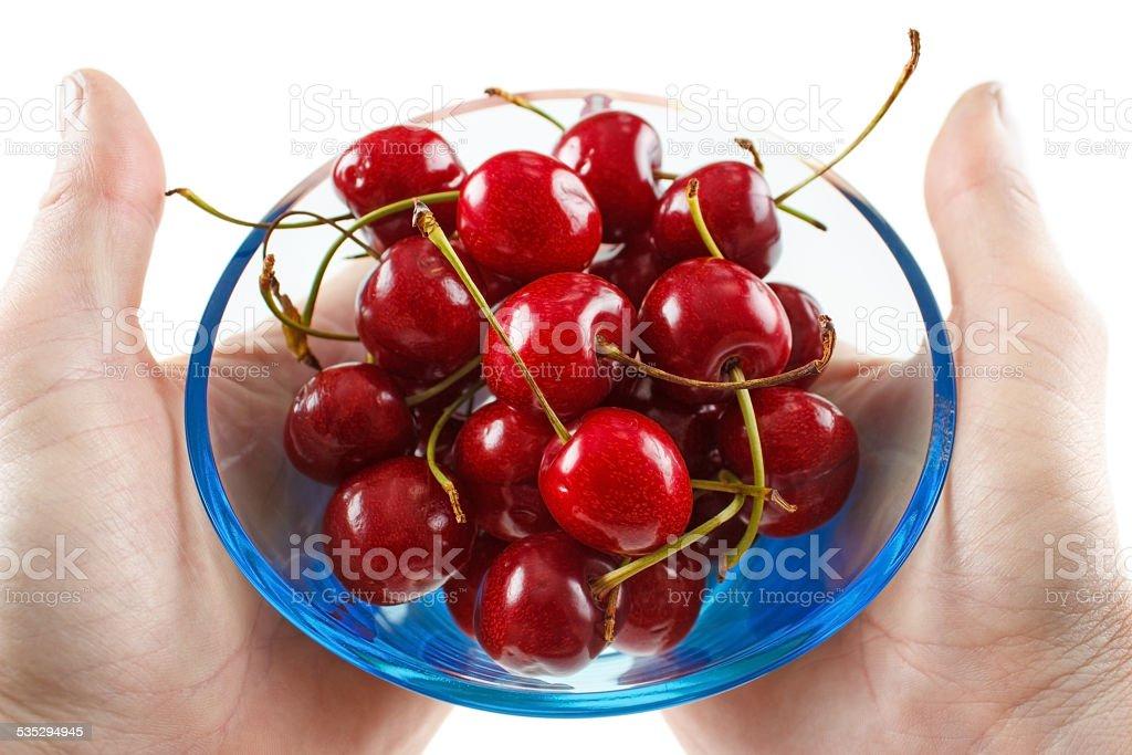 Cherry fruits royalty-free stock photo