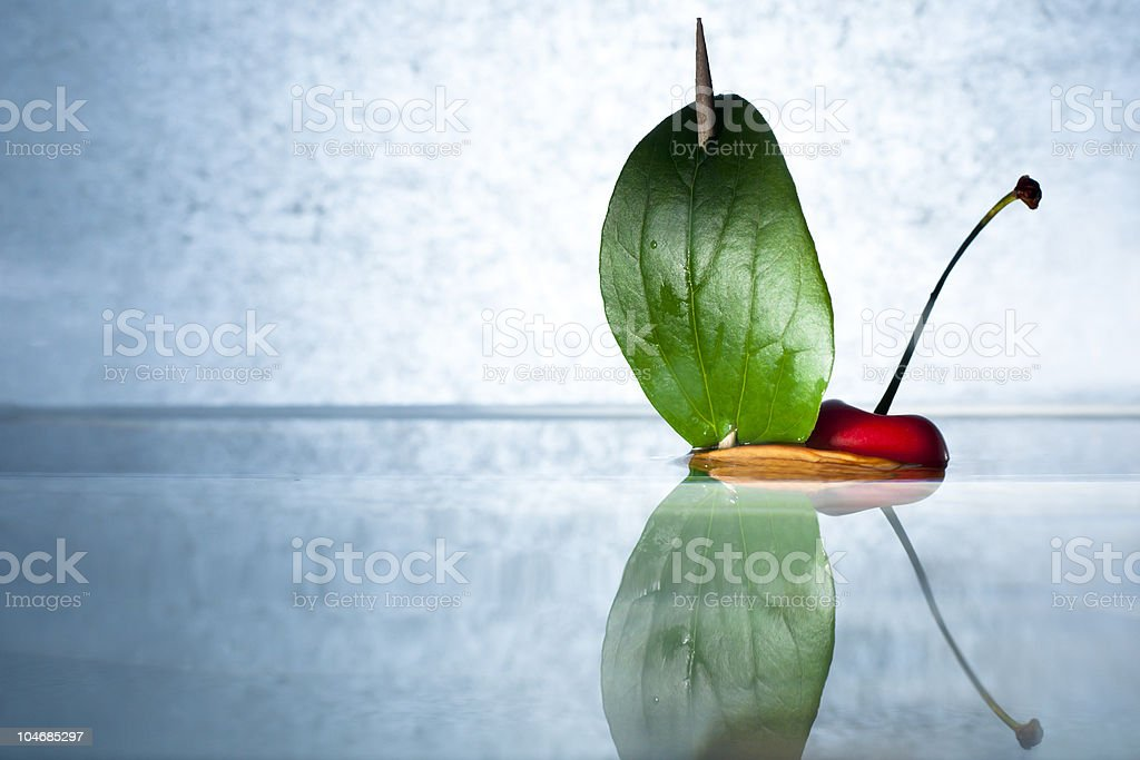 Cherry on a Nutshell Boat royalty-free stock photo