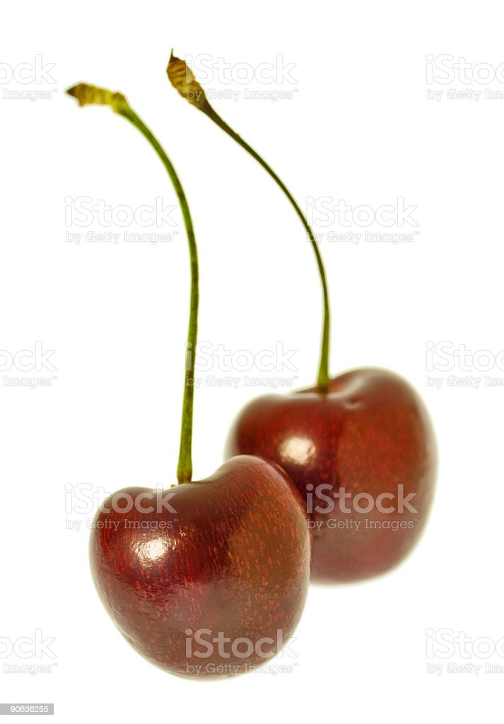 Cherry Pair stock photo