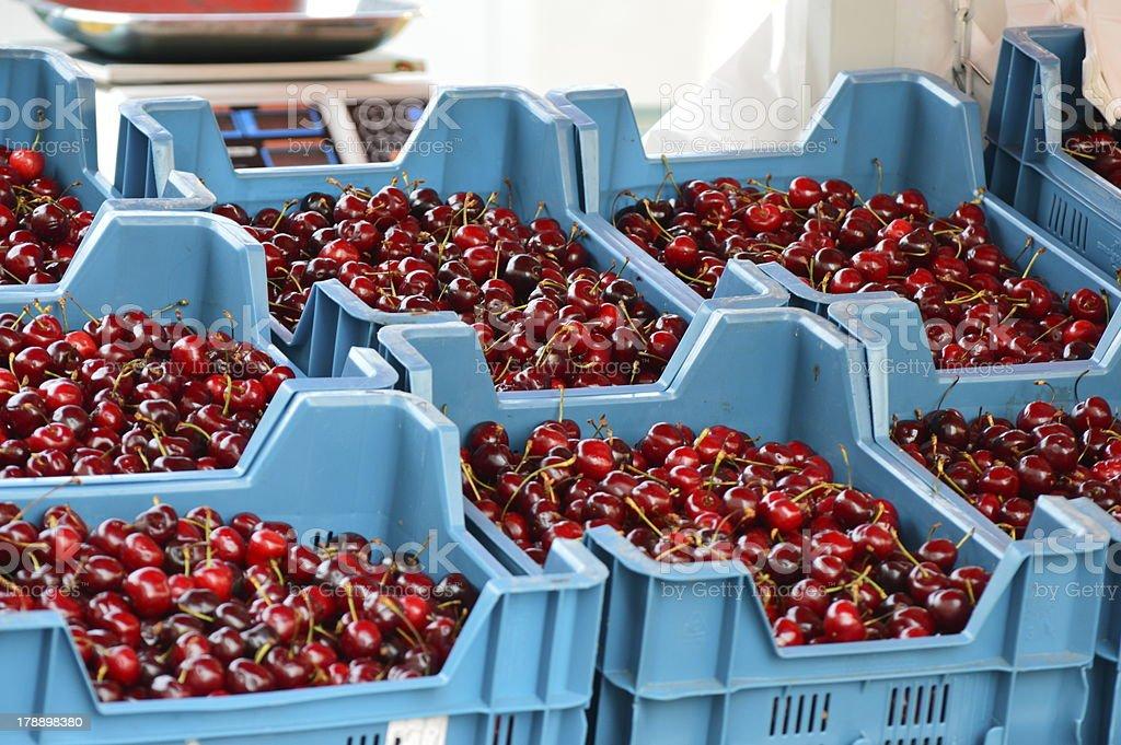 cherry royalty-free stock photo