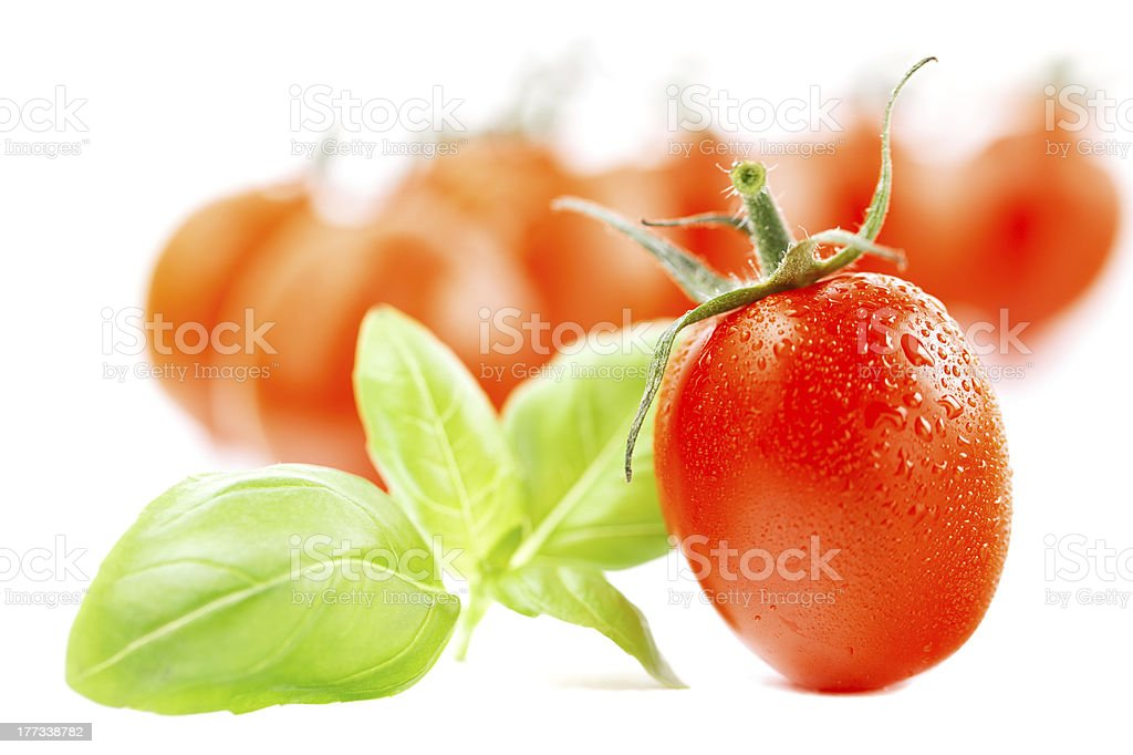 cherry tomato with basil leaves on white stock photo