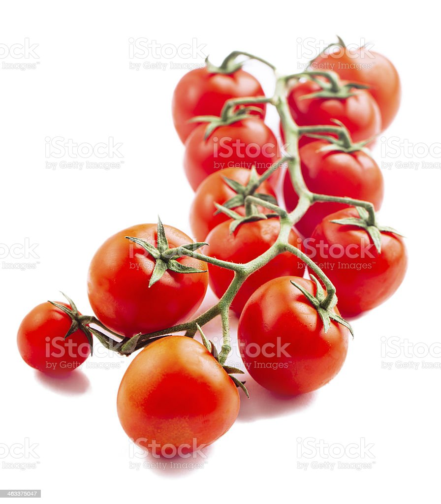 Cherry tomatoes isolated on white stock photo