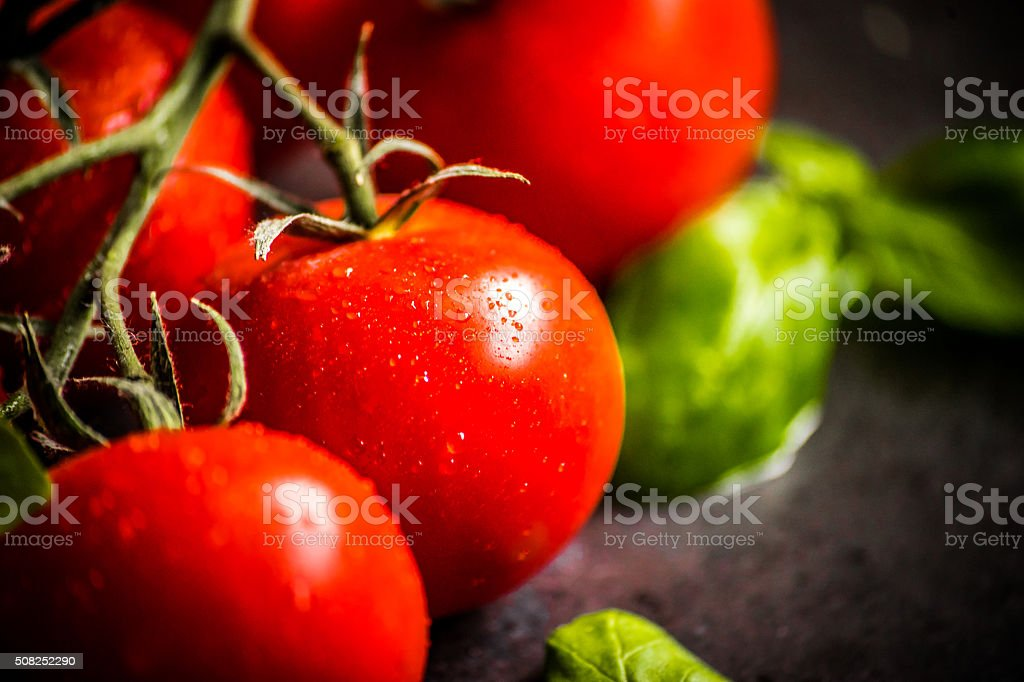 Cherry tomatoes on the vine stock photo