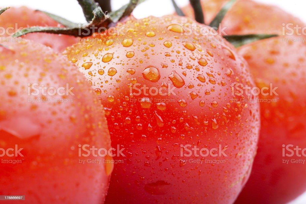 cherry tomatoes on white background stock photo