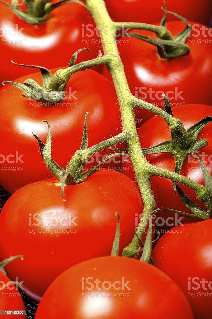 Cherry Tomatoes royalty-free stock photo