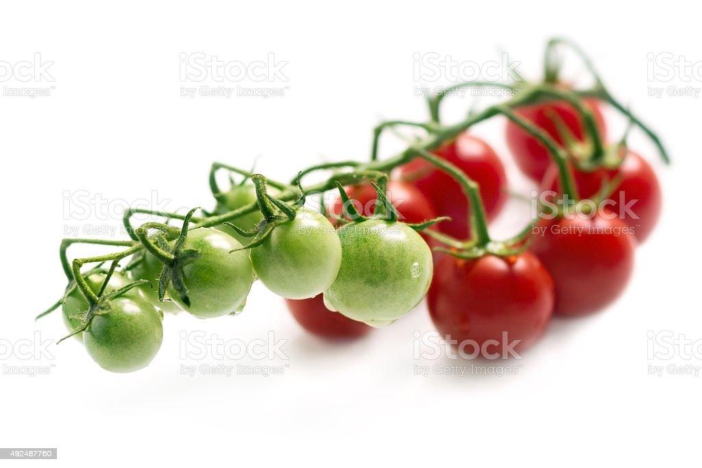 Tomates cherry foto de stock libre de derechos