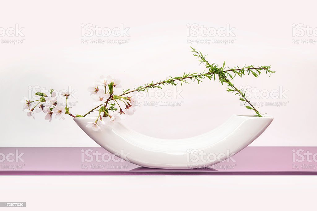 Cherry tree spring japanese floral arrangement (ikebana) stock photo