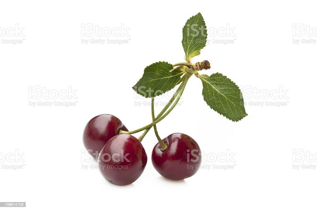 Cherry trio stock photo