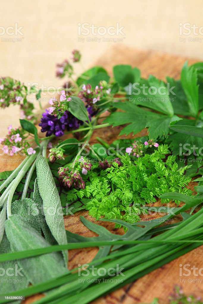 Chervil and other Herbs royalty-free stock photo