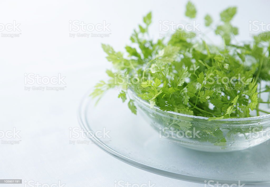 Chervil on plate. royalty-free stock photo